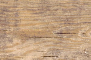 Плитка напольная Timber Бежевая