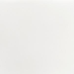 Ультра латте белый матовый 599х599 MR235