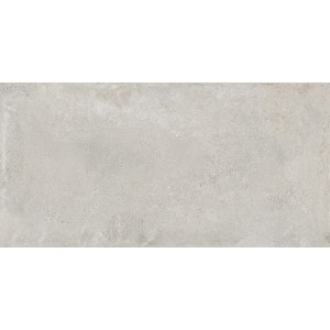 Перла светло-серый матовый 1200х599 MR305