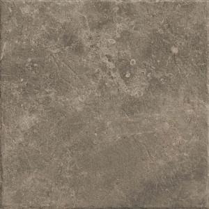 Червиния земля 450х450 Ч539
