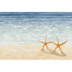 Декор Holiday Бежевый Звезда